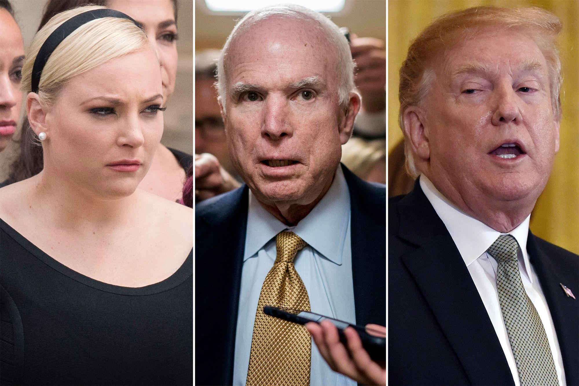 Meghan McCain Claps Back At 'Disgraced President' Donald Trump After He Attacks Her Late Father Senator John McCain Again!