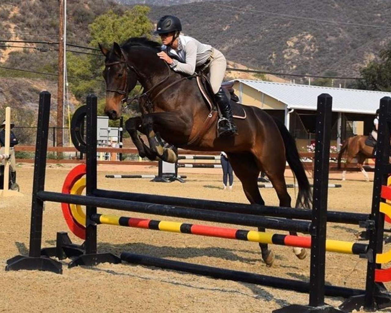 California Equestrian Robert Gage Commits Suicide After Receiving Permanent Ban — Was He Wronged?