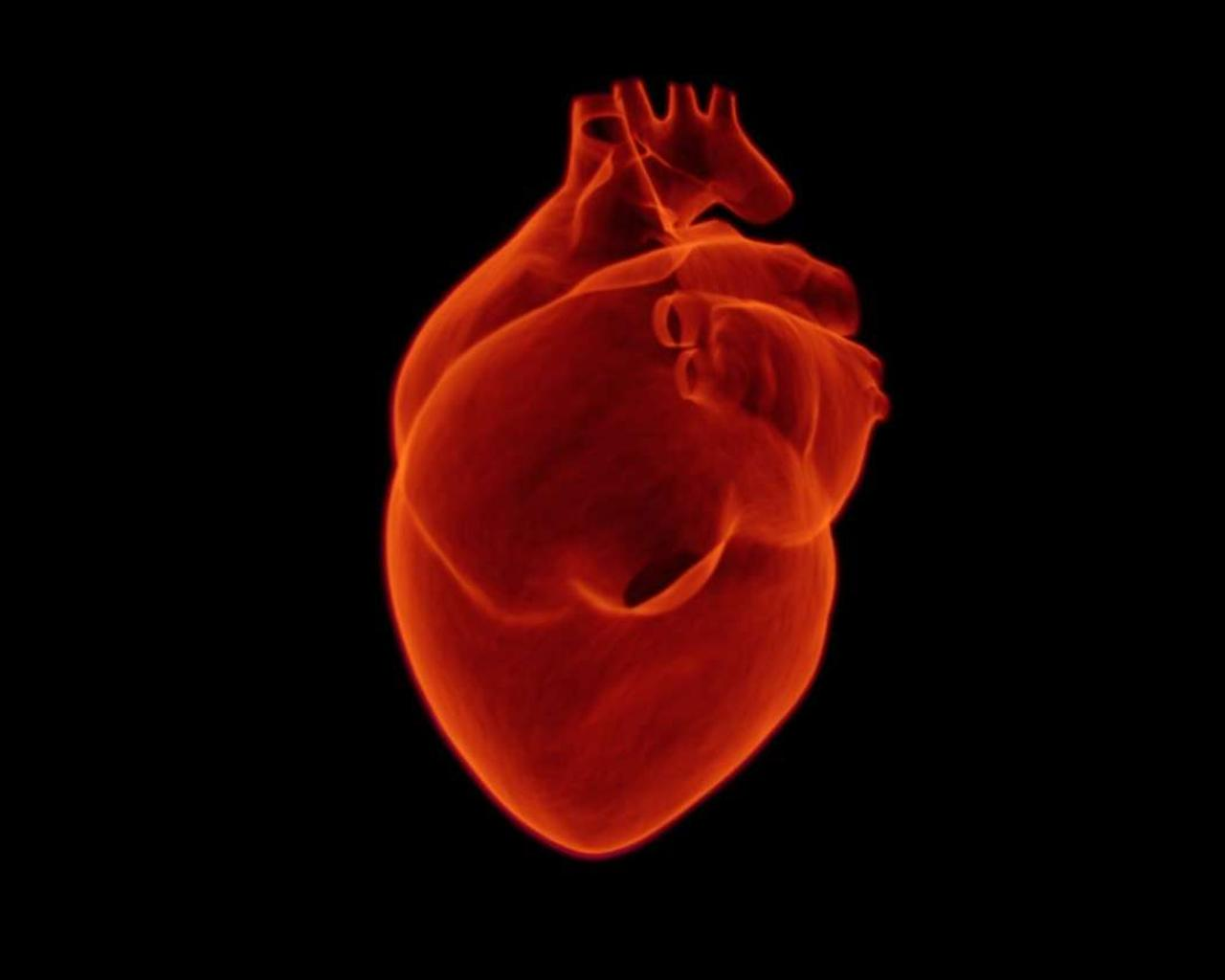 Recovered COVID-19 Patients Can Suffer Long-Term Heart Damage, New Studies Say -- Shall We Become More Careful?