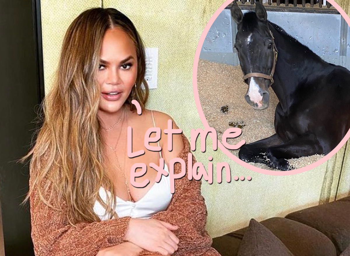 Chrissy Teigen Takes Up Horseback Riding -- And Defends 'Tone Deaf' Tweet About New Hobby!