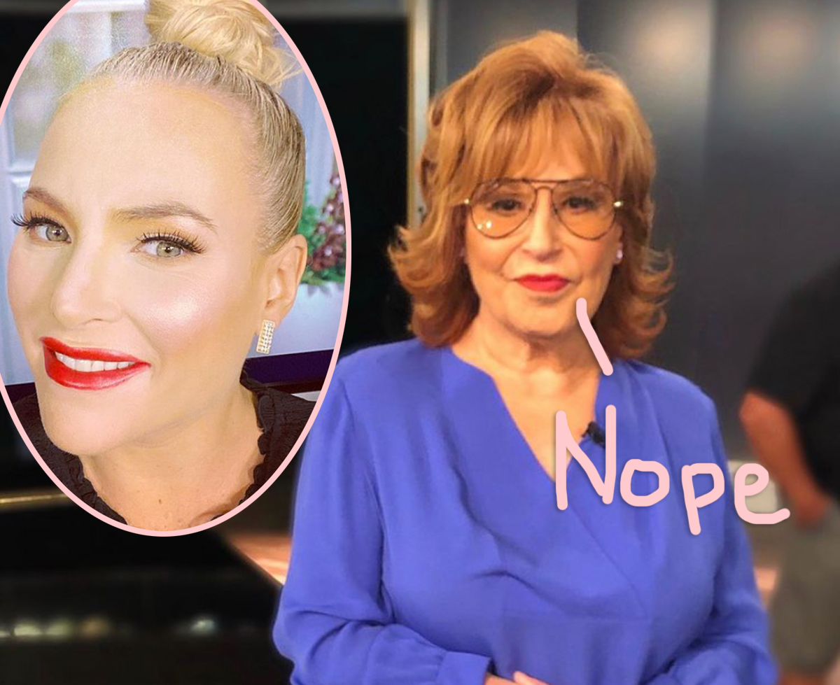 The View's Joy Behar Snaps Back At Meghan McCain Following Her Return From Maternity Leave