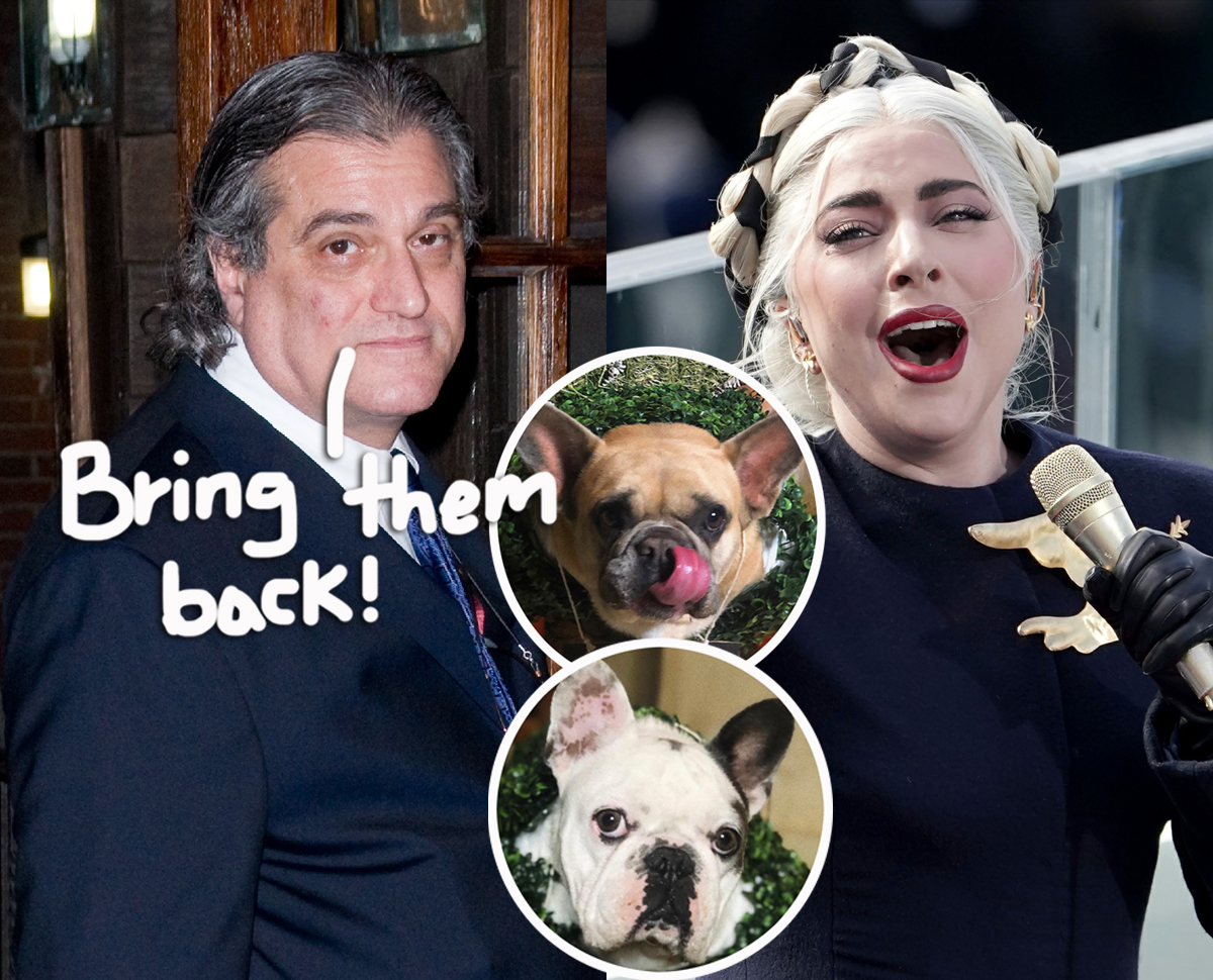 Lady GaGa's Father Speaks Out On Shooting & Dognapping: 'We're Just Sick Over It'