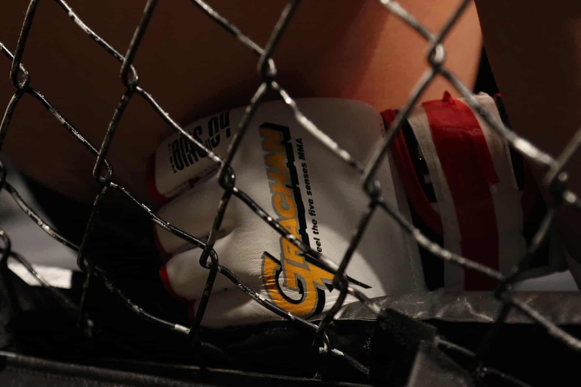 UFC Fight Night 185: Blaydes vs Lewis Preview and Pick