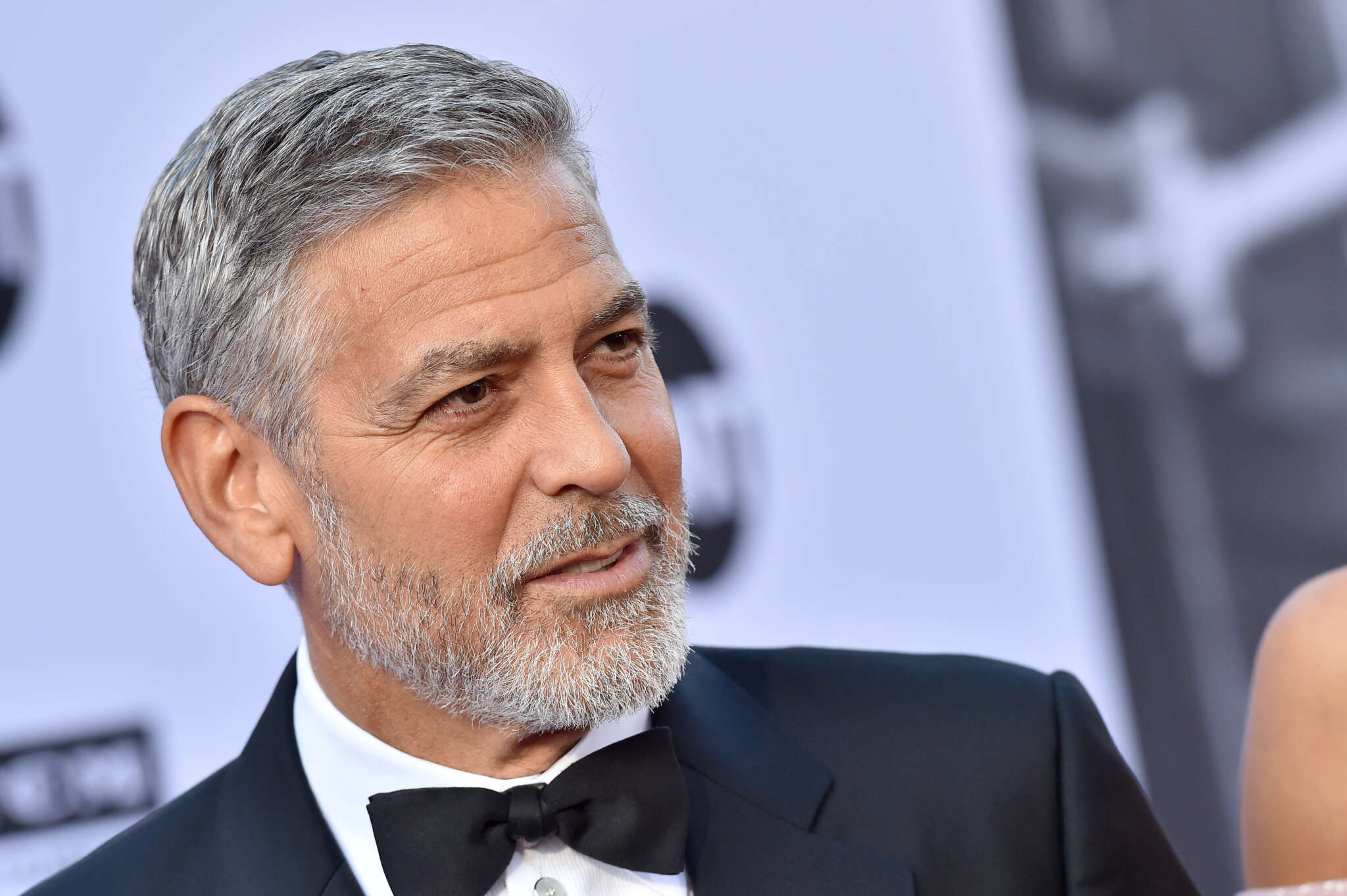 George Clooney Says That His New Hobbies Are Cleaning After His Twin 'Slobs' As Well As Doing Laundry And Dishes!