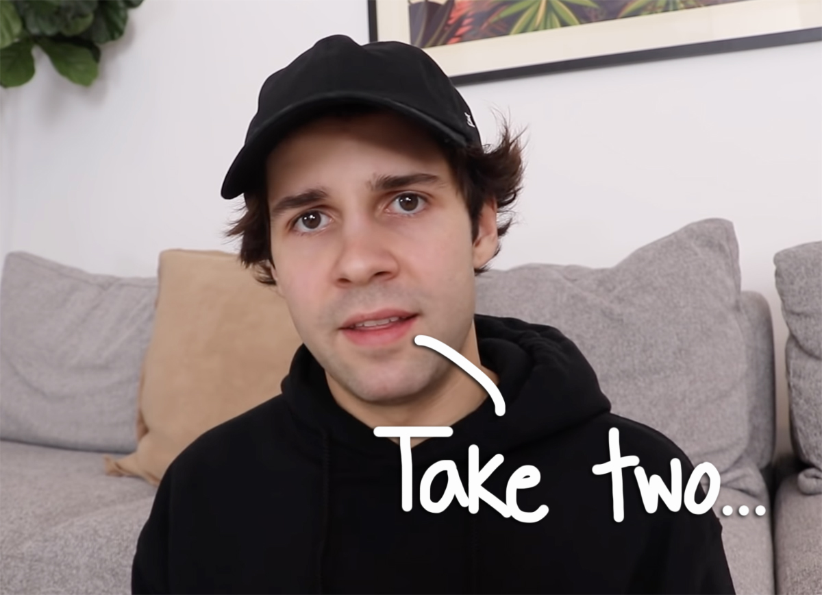 David Dobrik Says He 'Fully' Believes Sexual Assault Allegations Against Former Vlog Squad Member In SECOND Apology Video