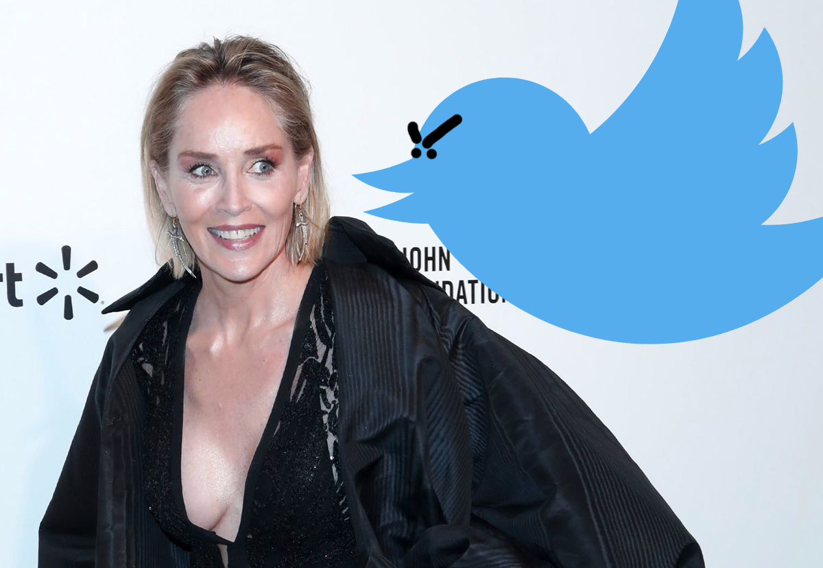 Sharon Stone Says 'Cancel Culture Is The Stupidest Thing' — Check Out Her Plea For Change!
