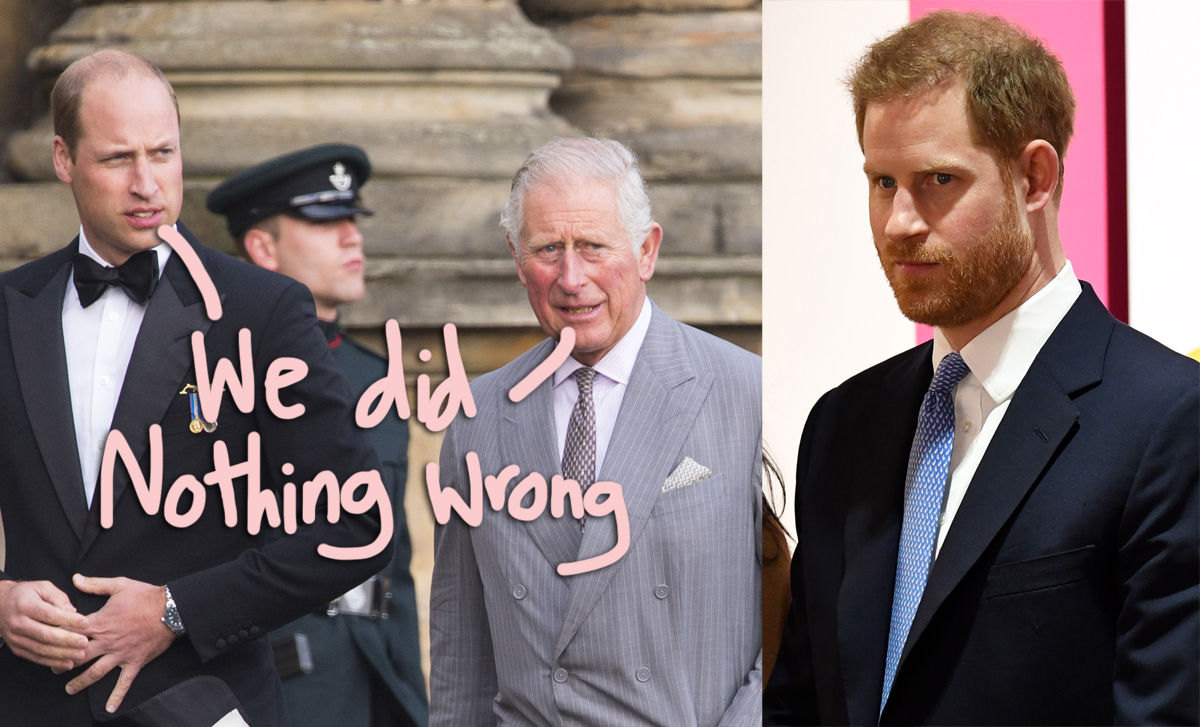 Prince Harry Reveals Conversations With William & Charles Following The Damning Tell-All Were 'Not Productive'!