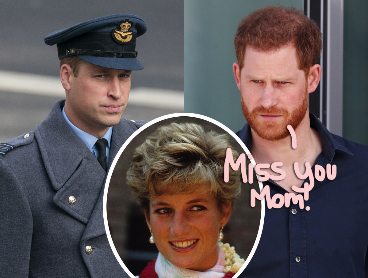 How Prince Harry & Prince William Honored Princess Diana For UK's Mother's Day!