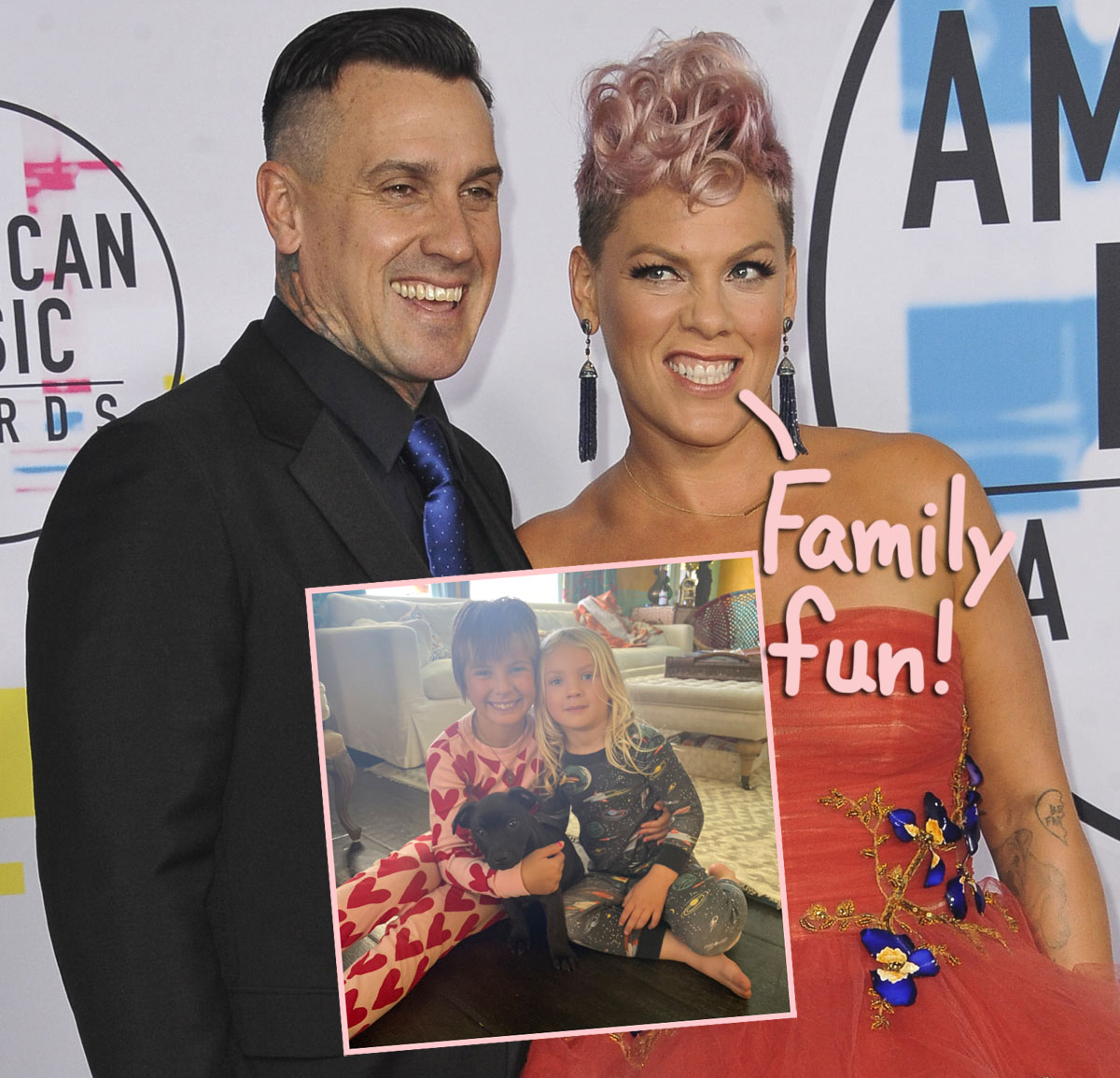 Pink's Rescue Pup — See Her Family's Adorably Furry New Member HERE!