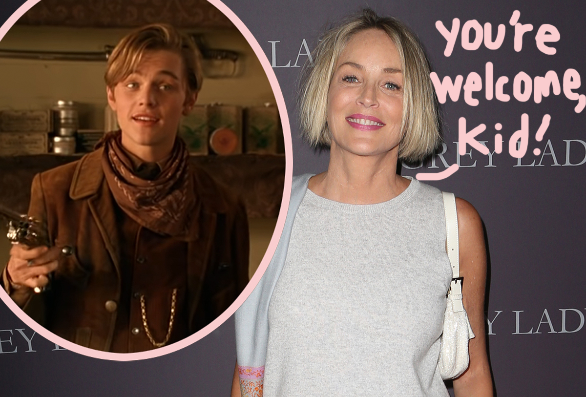 Sharon Stone Had To Pay Leonardo DiCaprio Herself To Get Him Hired In Early Role! WTF?!