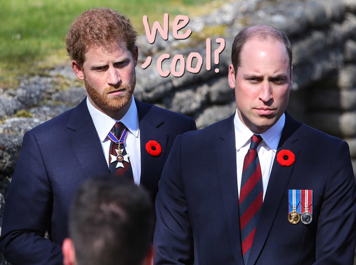 Royal Family Sees Prince Philip Funeral As An 'Opportunity' To Thaw Rift Between Harry & William