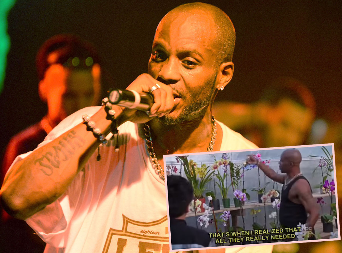 DMX's Orchid Love Goes Viral After His Death: 'All They Really Needed Was Time And Attention'