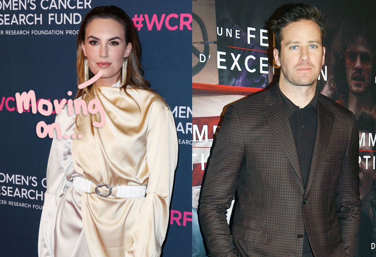 Elizabeth Chambers Gives Rare Answer To Fan Question About Armie Hammer's Sexual Assault Accusations
