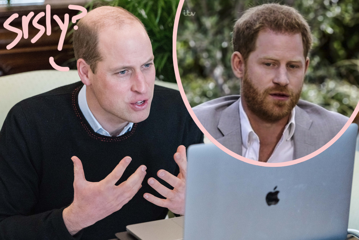 Prince William 'Accused Harry Of Putting Fame Over Family': Inside Their Big Fight!