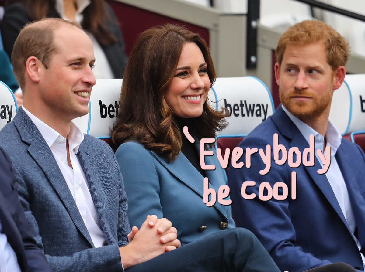 Kate Middleton To Act As 'Peacemaker' When Prince William & Harry Reunite At Funeral
